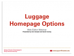 Luggage Homepage Options