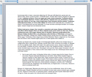 Screenshot of an example document in Word