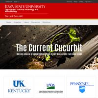 Current Cucurbit