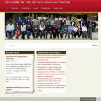 SeriolaDB: Seriola Genomic Resource Website