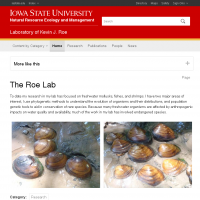 Laboratory of Kevin J. Roe | Natural Resource Ecology and Management